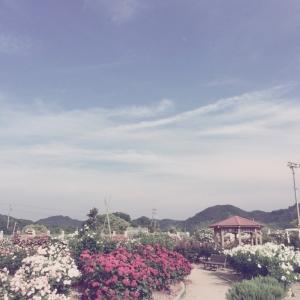以前の記事: 休日に島へ行ってきました〜