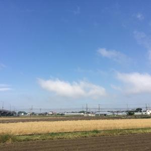 以前の記事: Roccaです麦も刈り取られ〜景色がシンプルに〜