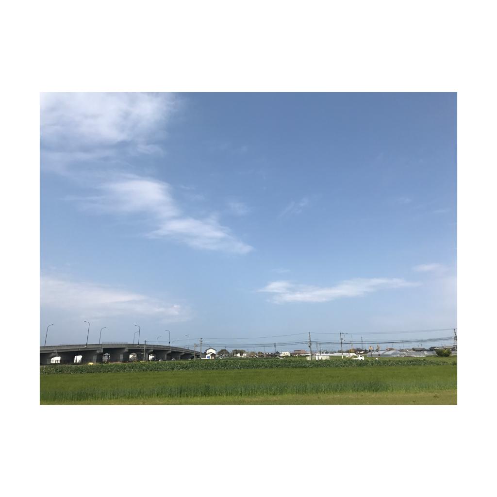 PICK UP トレンド情報編