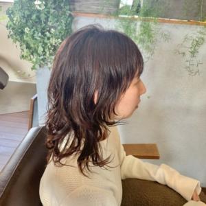 新しい記事: 春ウルフスタイル〜