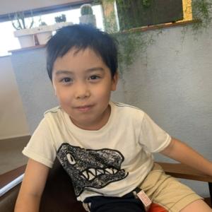 以前の記事: お子様カット髪卵編WWW